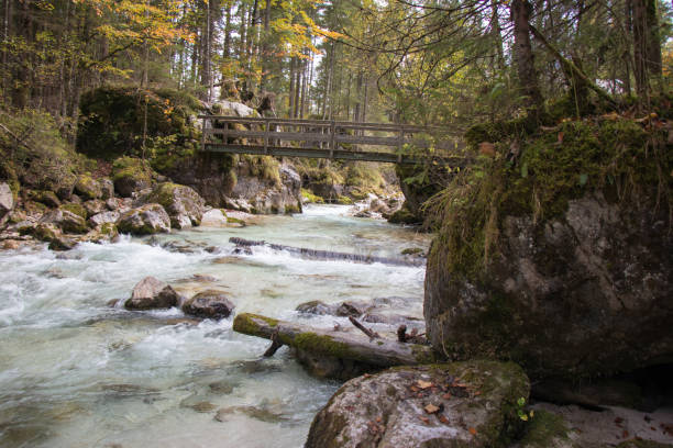 holzbrücke am fluss in deutschland - free images for downloads stock photos and pictures