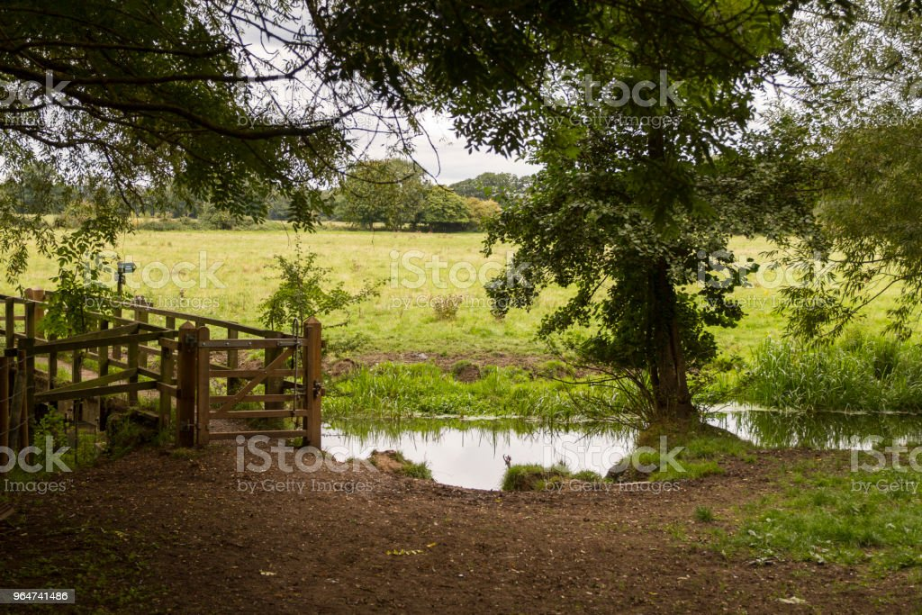 Wooden bridge over moorland stream royalty-free stock photo