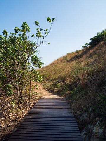 Landscape summer Vertical view front  pathway original lane mountain and grassland to view blue sea clear sky study natural route Brown wooden bridge travel\