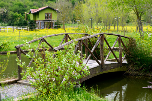 Wooden bridge on pond. MORE IMAGES...(you can see links to other categories via my main account page-About Me)