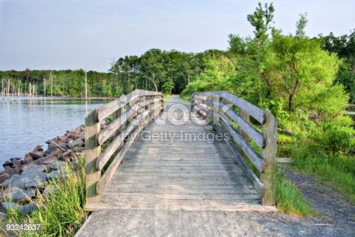 A wooden bridge along a path in the wilderness