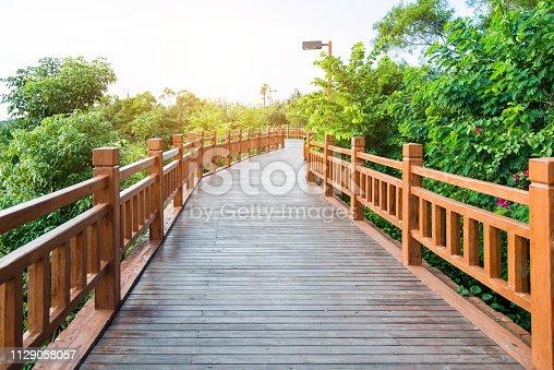 Wooden bridge through the forest