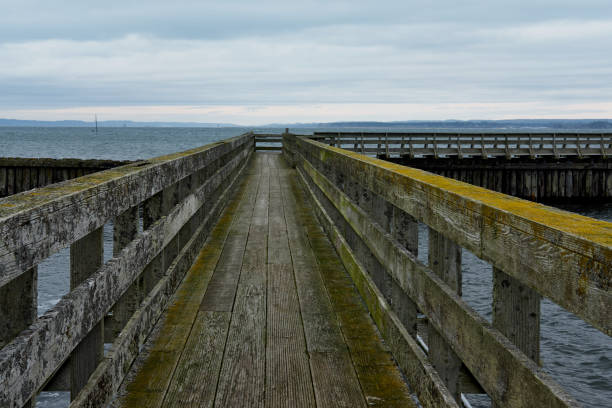 Wooden bridge with green growth pointing to a stormy sea stock photo