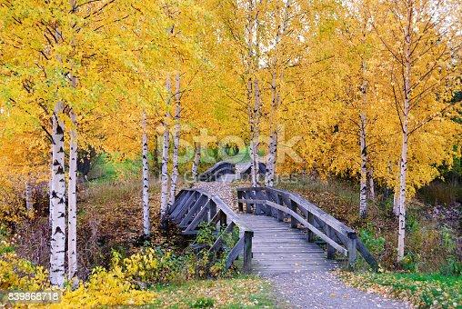 istock Wooden bridges in autumn landscape 839868718