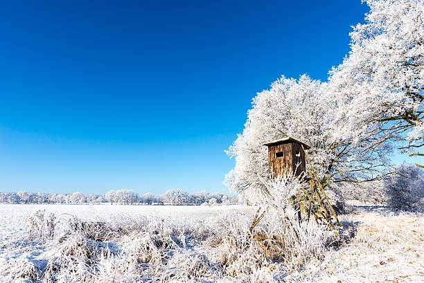 Wooden brown hunting shelter next to frozen trees stock photo