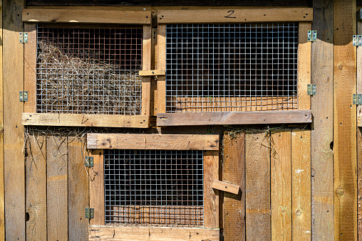 Wooden cage with a metal net on the door for breeding rabbits, standing in the countryside.