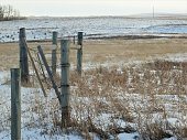 istock Wooden Cattle Fence and Agricultural Prairie Landscape in Winter 1207063035