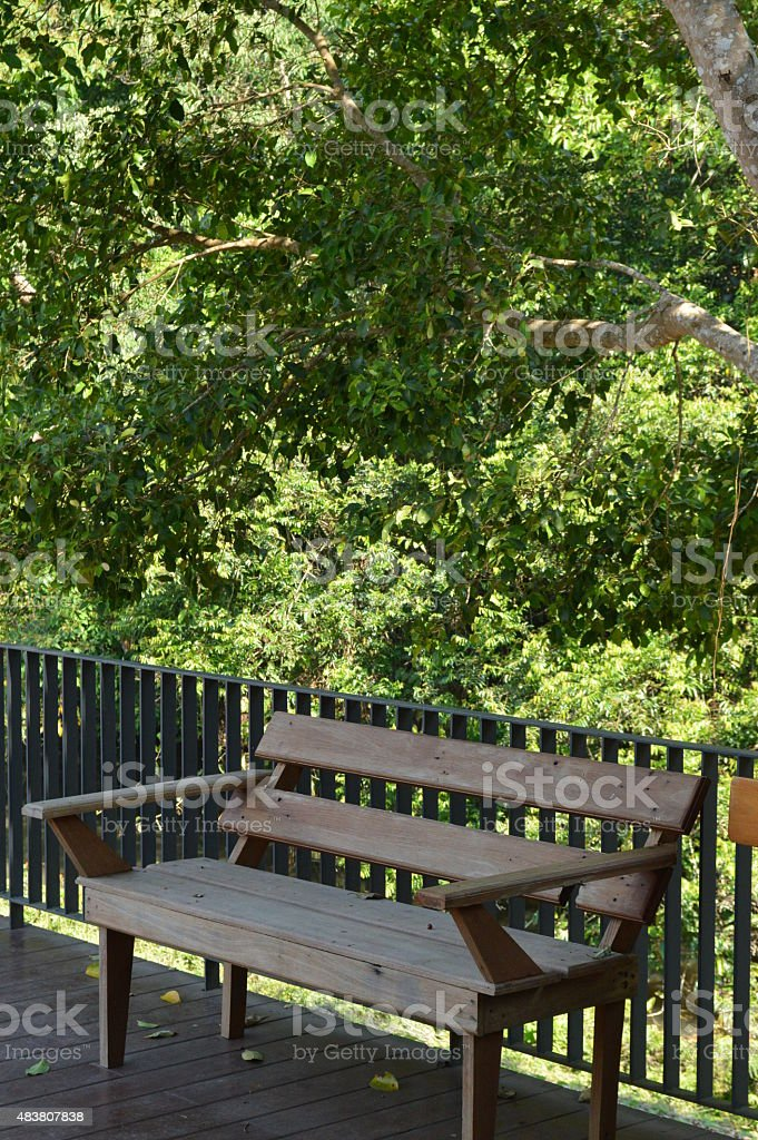Wooden chair jungle view stock photo