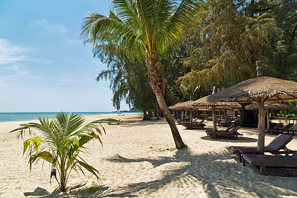 Wooden chairs and umbrellas on white sand beach Wooden chairs and umbrellas on white sand beach at Koh Chang island in Thailand koh chang stock pictures, royalty-free photos & images