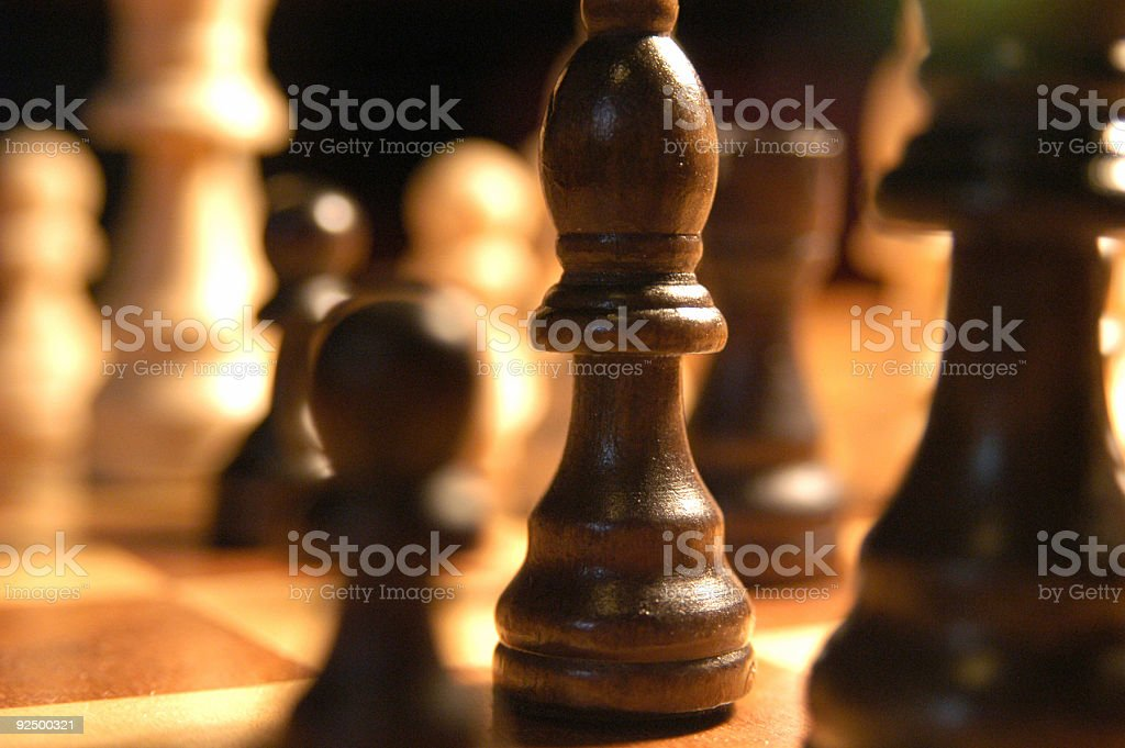 Wooden Chess Pieces on a Wooden Board royalty-free stock photo