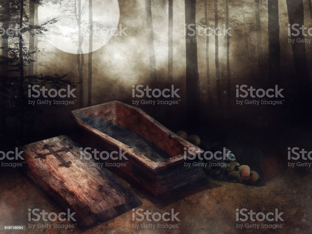 Wooden coffin, bones, and a dark forest stock photo