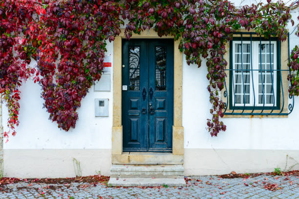 Wooden colored door and window of a typical Portuguese house stock photo