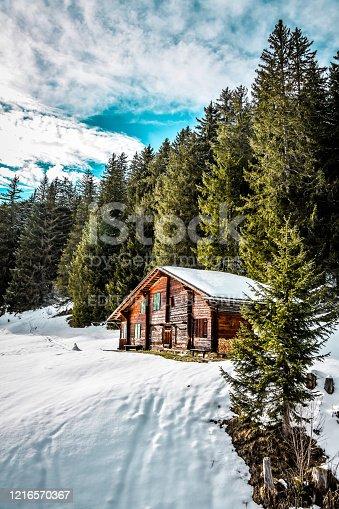 istock Wooden Cottage On Grindelwald First, Switzerland 1216570367