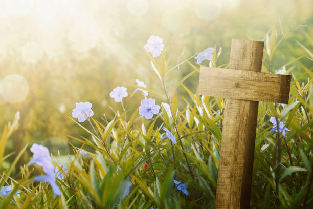 wooden cross and purple flower with sunlight - cross stock photos and pictures