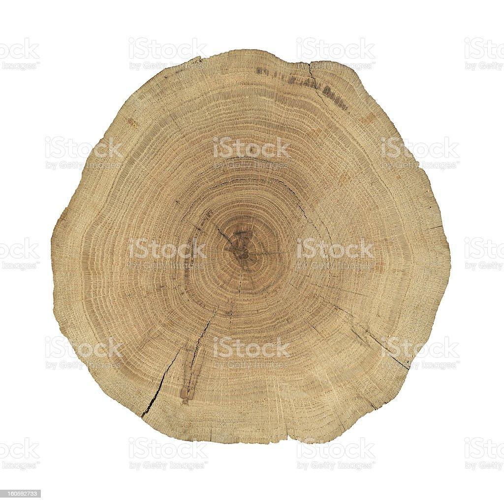 Wooden cross section - Lizenzfrei Alterungsprozess Stock-Foto