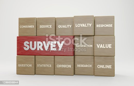 3D wooden cubes and Survey concept. Horizontal composition with copy space.