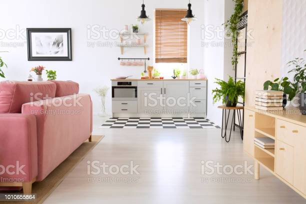 Wooden cupboard and pink sofa in bright flat interior with and real picture id1010655864?b=1&k=6&m=1010655864&s=612x612&h=garjl50oeo6rdbyc4igac41c98kfcyw7 p1pfaycehi=