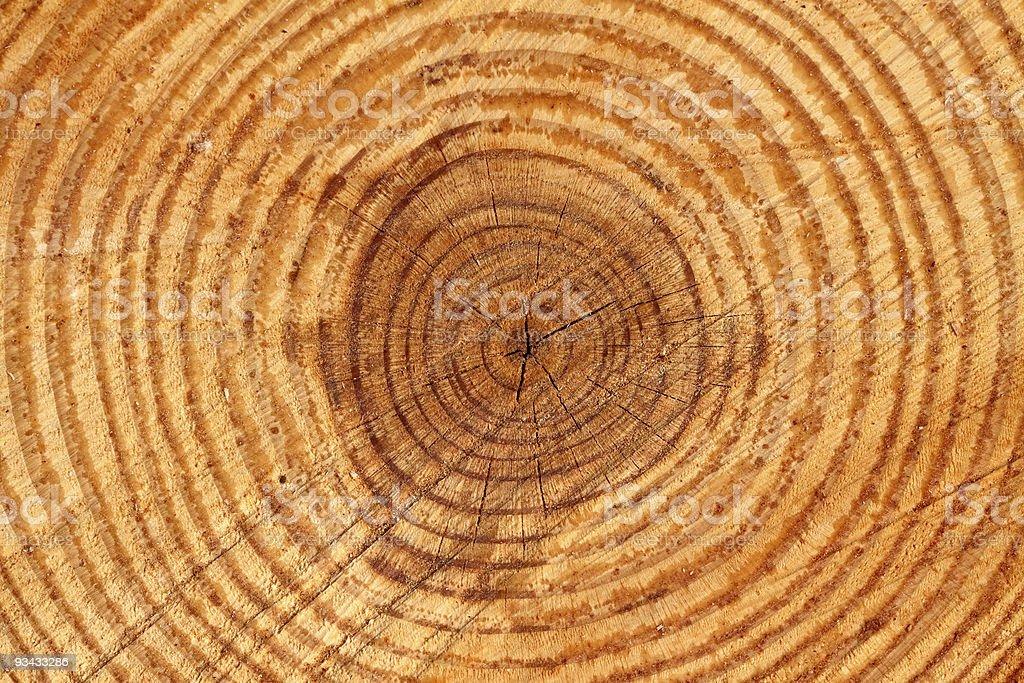 Holz Textur Schnitt Lizenzfreies stock-foto