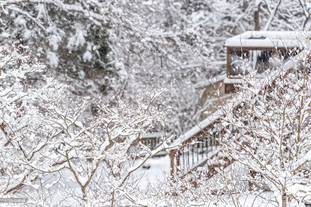 Wooden deck stairs of house home covered in white snow and trees...
