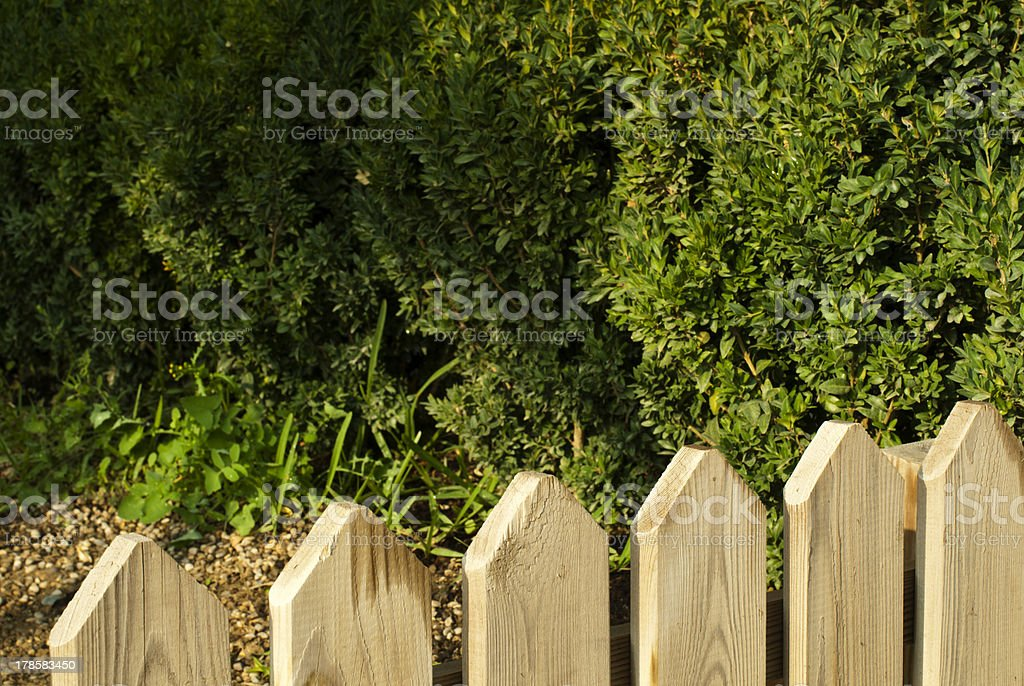 Picture of: Wooden Decorative Fence And Green Garden Stock Photo Download Image Now Istock