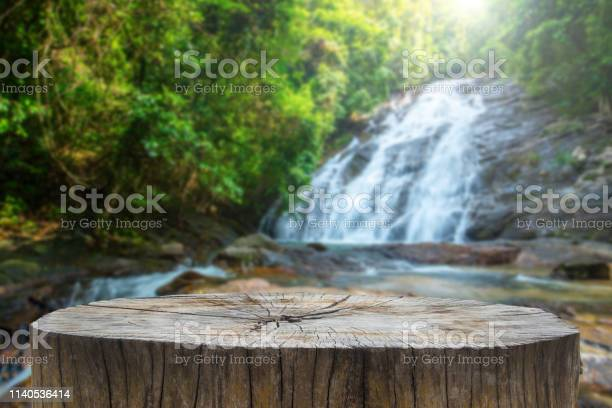 Photo of Wooden desk or stump in green forest background,For product display. Beautiful mountain at sunrise.