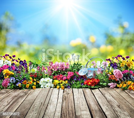 Table Desk Wit Flowerbed - Gardening