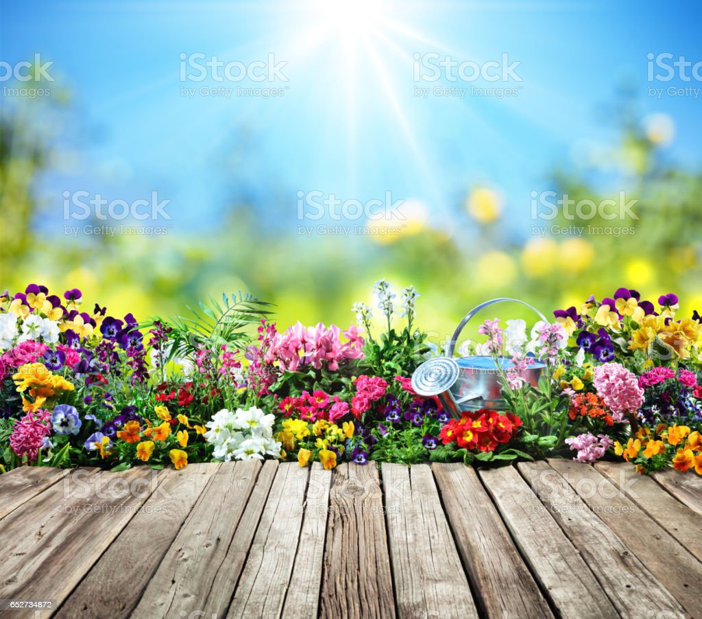Wooden Desk With Flowers In Garden stock photo