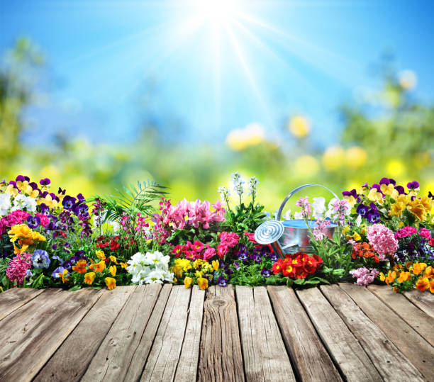 wooden desk with flowers in garden - spring stock pictures, royalty-free photos & images