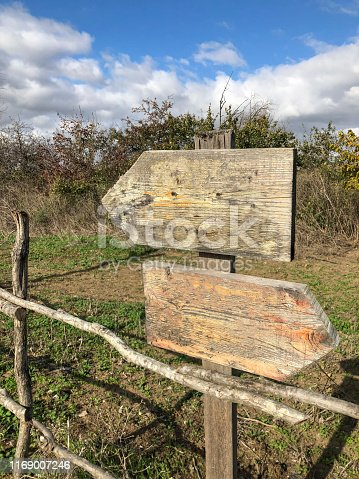 185884645 istock photo Wooden direction signs with copy space at garden 1169007246