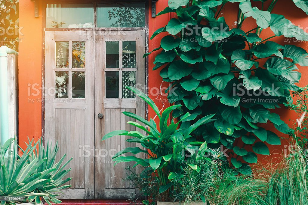wooden door on a red wall with tree photo libre de droits