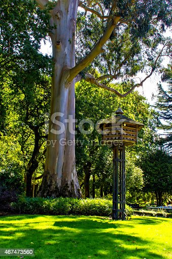 Wooden dovecote in summer park, Spain