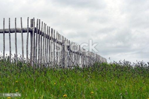 Wooden fence in field in Newfoundland