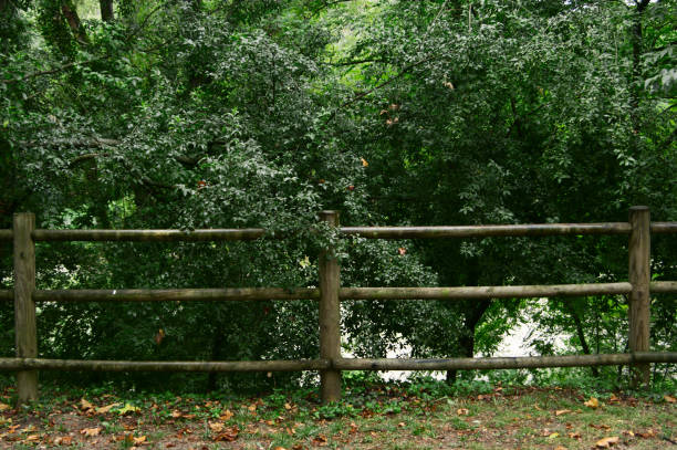 cerca de madera en zona de montaña con árboles - foto de stock
