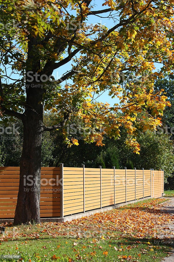 Wooden fence in the coutryside stock photo