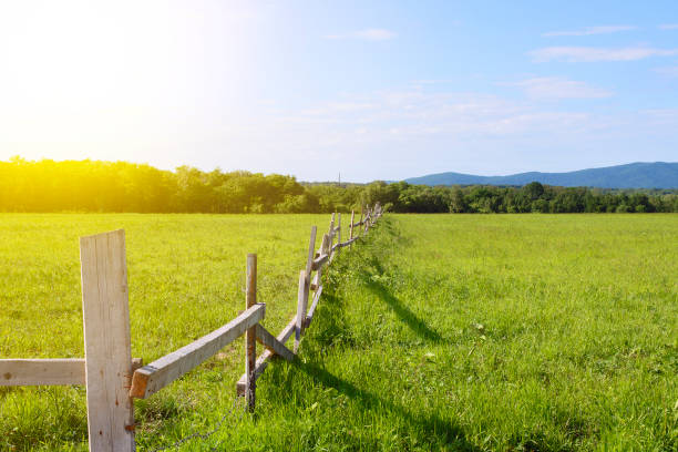 wooden fence in the farm wooden fence in the farm russian dacha stock pictures, royalty-free photos & images
