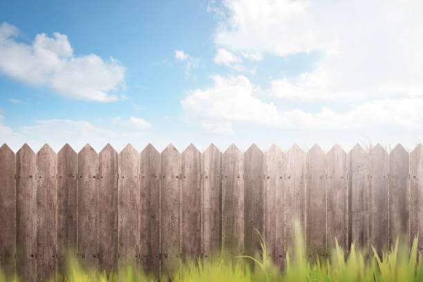 wooden fence on green garden - fence stock photos and pictures