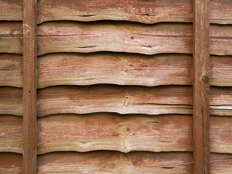 Close up of a brown larch lap wooden fence panel. Rustic background, wallpaper concept.
