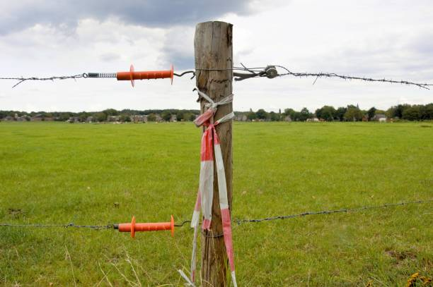 Wooden Fence post in a field Fence post with barbed wire in a lush green field werken stock pictures, royalty-free photos & images