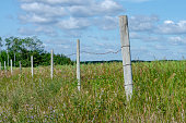 istock Wooden fence posts with barbed wire 1167131761
