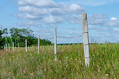 istock Wooden fence posts with barbed wire 1167131800