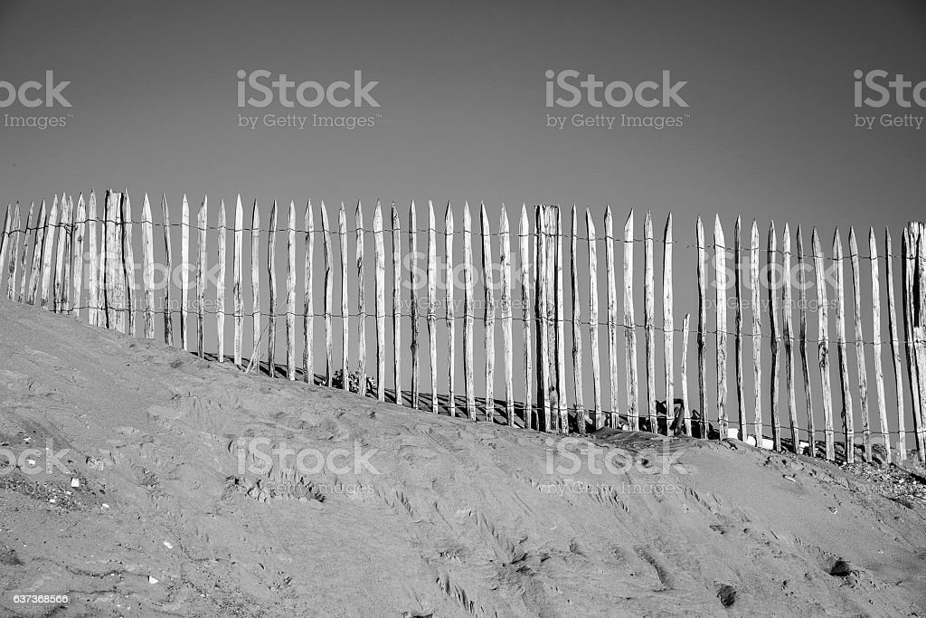 wooden fence protecting the dune by the seaside stock photo