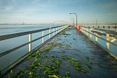 istock Wooden fishing pier leading towards an arched bridge 1258176206
