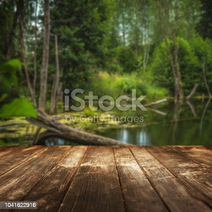 Wooden floor and defocused landscape - footpath in the wood on background. Focus on foreground.
