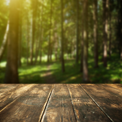 Wooden floor and defocused summer forest on background