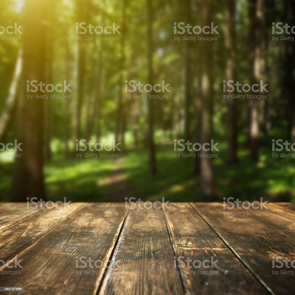 Wooden floor and defocused summer forest on background stock photo