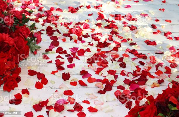 Wooden floor strewn with rose petals picture id1124705310?b=1&k=6&m=1124705310&s=612x612&h=dsjp7su9agowzkkk1nzjvvc 6o8hjjz8mhjlvlvrulu=