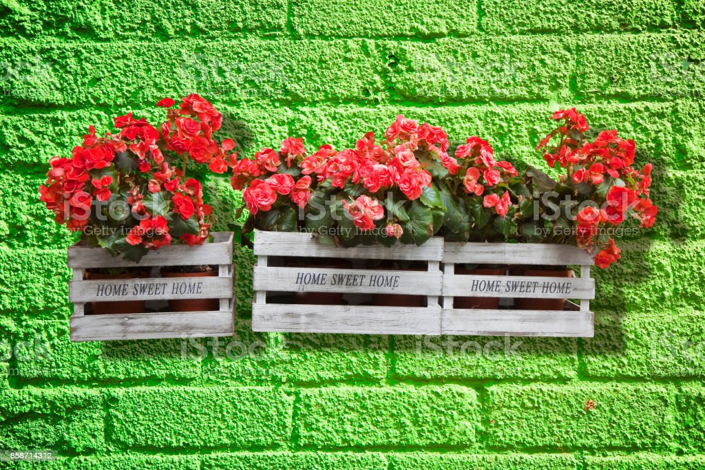 Wooden flowers boxes against an old green brick wall - Home sweet home written on wooden box stock photo