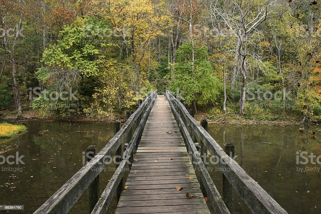 Wooden Foot Bridge royalty-free stock photo