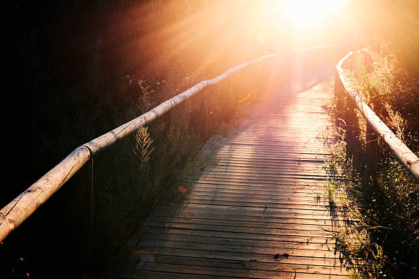 Wooden footbridge at sunset in Andalusia, southern Spain. stock photo