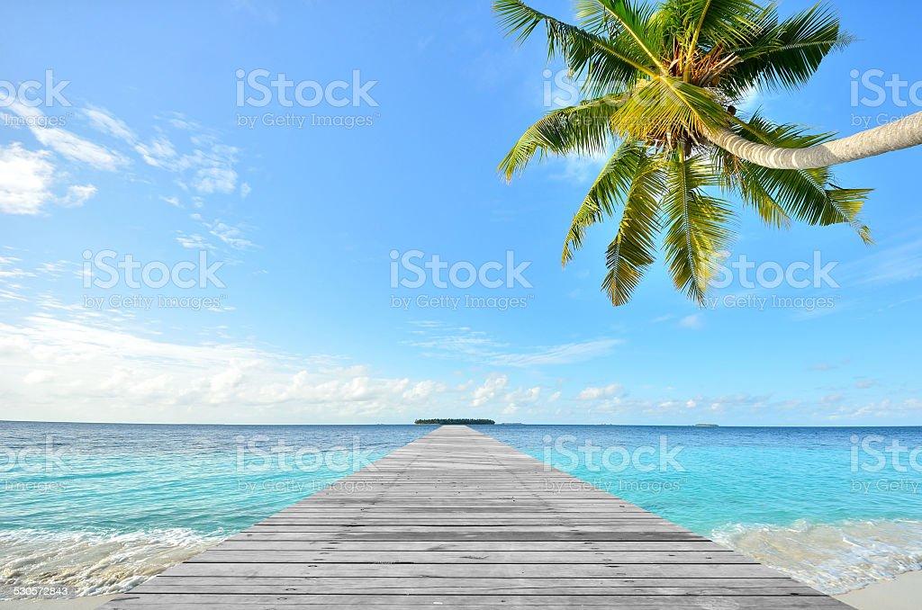 Wooden footbridge leading to tropical sea stock photo